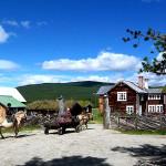 Kvebergsøya Gard – Ridning/kjøring