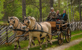 Kvebergsøya Gard – Aktiviteter