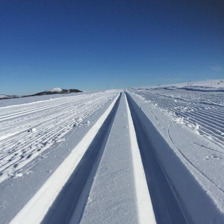 Skispor langs Rondanevegen