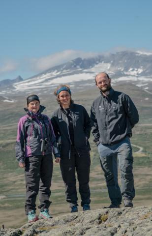 Norsk Villreinsenter Nord-04-foto-Rebecca Nedregotten Strand