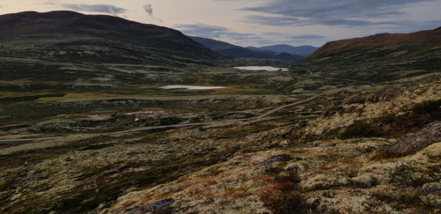 Fjellguide Inger-tur-1