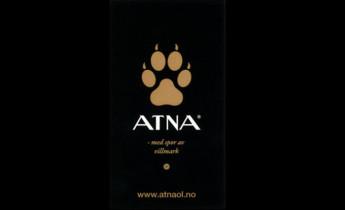 Atna Øl